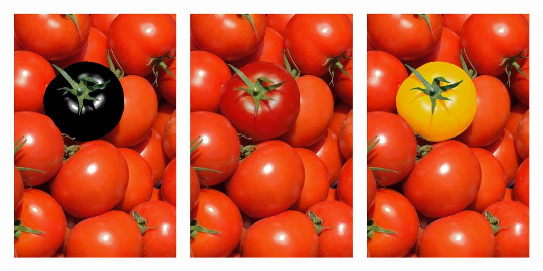 SRG-Tomaten.jpg